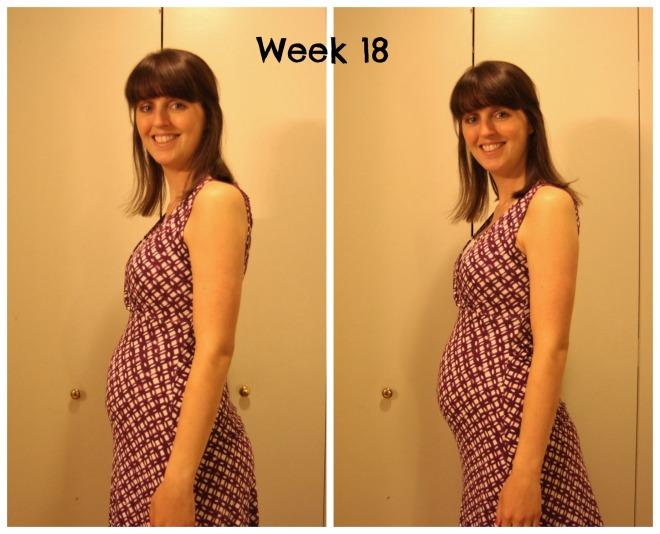 18 week